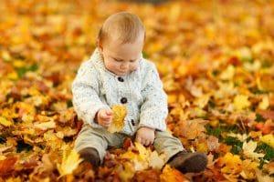 autumn-165184